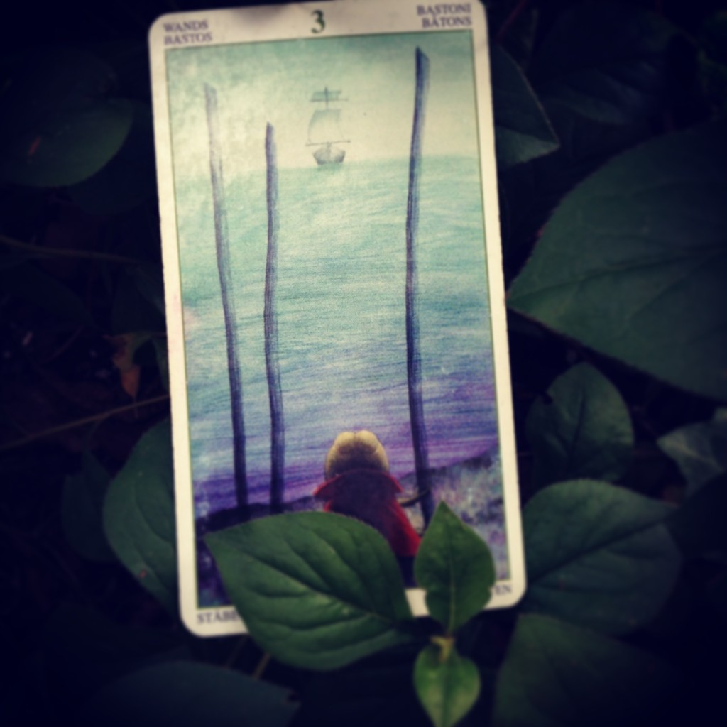 Padmes Card of the day 3 of Wands