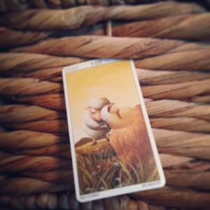 padmes card of the day strength