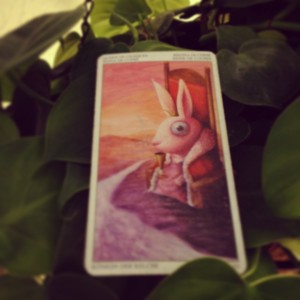padmes card of the day queen of cups