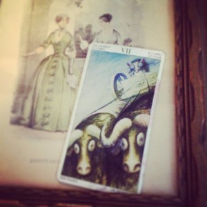 Padmes Card of the Day The Chariot