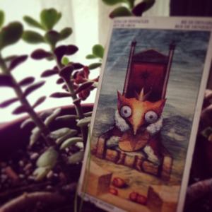 padmes daily tarot king of pentacles