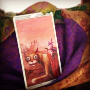 padmes card of the day knight of cups