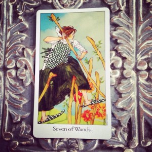7 of Wands Padmes Daily Tarot