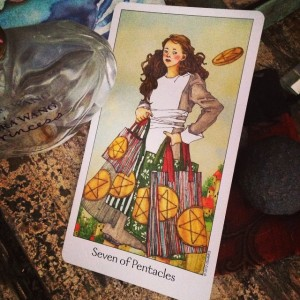 7 of pentacles padmes daily tarot
