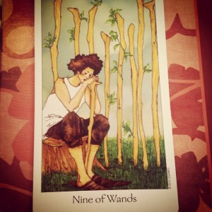 9 of Wands Padmes Daily Tarot