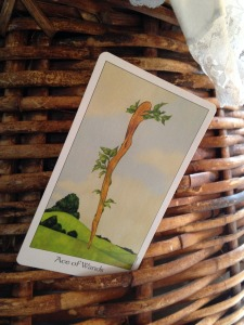Virgo Tarotscope December 2014