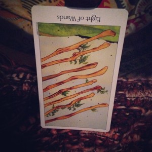8 of Wands Padmes Card of the Day